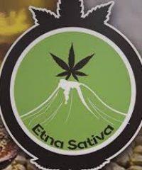 Etna Sativa