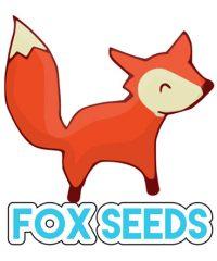 Foxseeds Grenoble